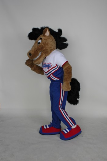 Custom Mascot | Mascot Costume | Custom Corporate Mascot ...