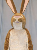 Little Nut Brown Hare Mascot Costume