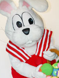 Peter Cottontail Mascot Costume