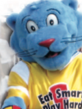 Power Panther Mascot Costume