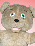 Shaggy Teddy Bear Mascot Costume