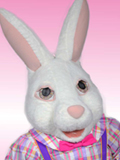 Lady Easter Bunny Costume