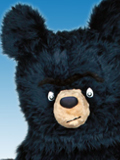 Bruce the Bear Mascot Costume