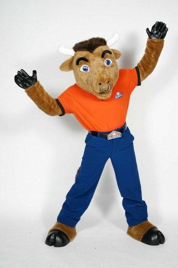 Elmer Mascot Costume