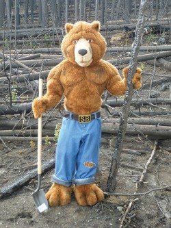 Smoked Bear Mascot Costume