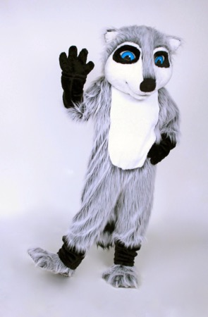 Raccoon mascot costume rental